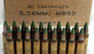 Government attempts to ban popular ammo as part of war on preppers and survivalists