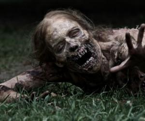 zombie-survival